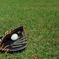 草原に野球用具